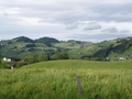 A lot of green around Appenzell